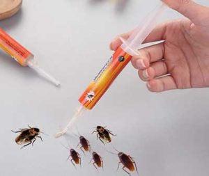 Απολύμανση με GEL για κατσαρίδες - μυρμήγκια έντομα